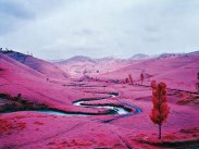 19_RichardMosse