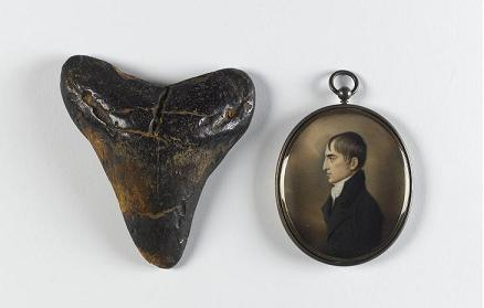 shark_tooth_and_emmet_pendant